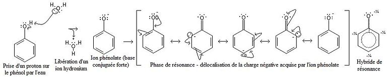 Resonance phenolate.JPG