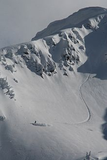 Revelstoke Mountain off piste.jpg