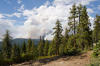 Rim Fire - The fire as viewed from the Tioga Road on August 27.