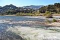 Rio Mondego - Portugal (50799619027).jpg