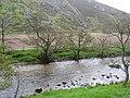River Almond - geograph.org.uk - 433590.jpg