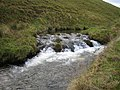 River Barle - geograph.org.uk - 291961.jpg