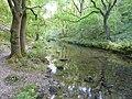 River Lathkill - geograph.org.uk - 559386.jpg