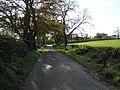 Road at Altaderry - geograph.org.uk - 1030733.jpg