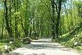 Roads in Manali Himachal India (2).JPG