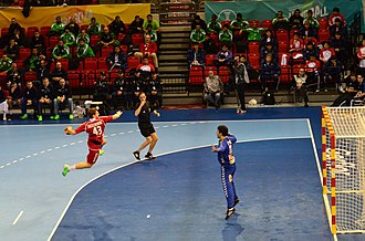 2013 World Men's Handball Championship - Robert Orzechowski takes a shot against Serbia