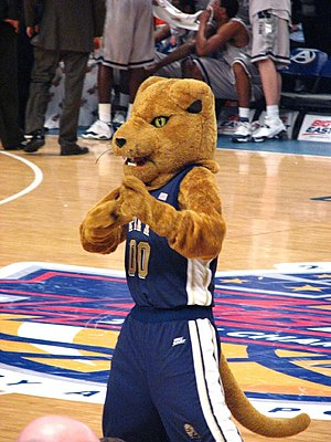 "Panthers of Pittsburgh - ""Roc"" the Panther costumed mascot, 2007"