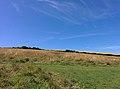 Rock-cornwall-england-tobefree-20150715-152729.jpg