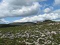 Rock Outcrop - geograph.org.uk - 1344237.jpg