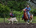 Rodeo Event Calf Roping 34.jpg