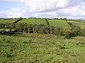 Roosky Townland - geograph.org.uk - 999539.jpg