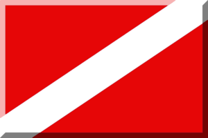 2013–14 Nemzeti Bajnokság I/A (women's basketball) - Image: Rosso e Bianco (Diagonale)2