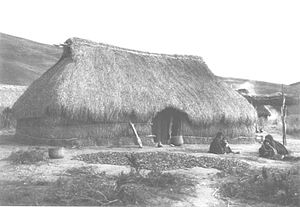 Ruka (Mapuche) - A Mapuche ruka by 1930.