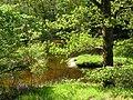 Ruisseau du Langladure au Moulin.jpg