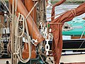 SB Thistle SB Hydrogen 3919.jpg