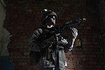 Saber Strike 2012 120618-M-MS727-005.jpg
