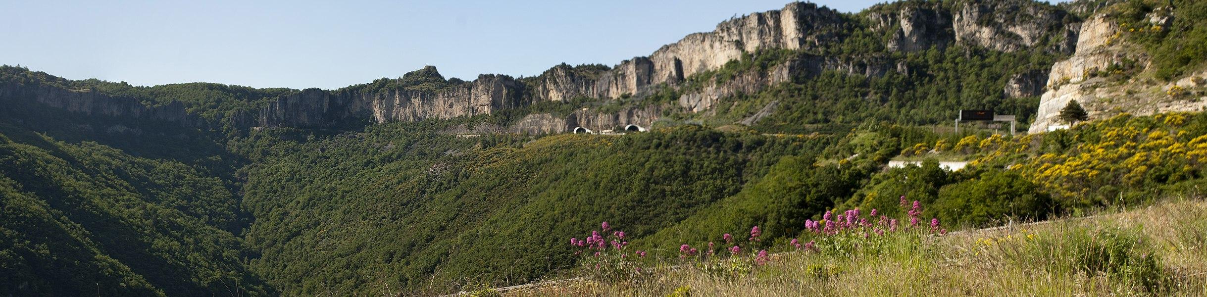 The cliffs of the Pas de l'escalette mark the southern limit of the Larzac plateau. View from the belvédère of Pégairolles-de-l'Escalette.