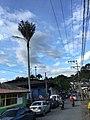 Salento, Quindio, Colombia - panoramio - Jimmy Gómez N (35).jpg