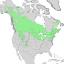 Salix bebbiana range map 2.png
