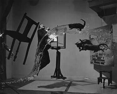 The 1948 work Dali Atomicus explores the idea of suspension, depicting three cats flying, water thrown from a bucket, an easel, a footstool and Salvador Dalí all seemingly suspended in mid-air.