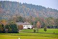 Sankt Veit an der Glan Baardorf Hof 14102010 93.jpg
