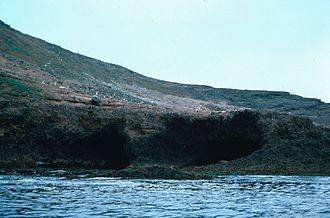 Santa Barbara Island - Santa Barbara Island