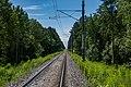 Sciklieva reserve (Belarus, June 2020) 05.jpg