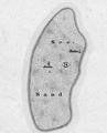 Seesand Karte 1878.png
