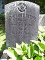 Seth Hunt Steere grave.jpg