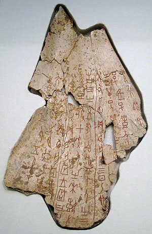 Oracle bone - Ox scapula recording divinations by Zhēng 爭 in the reign of King Wu Ding