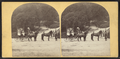 Sharon Springs, N.Y. (View of women on horse-drawn carts.), from Robert N. Dennis collection of stereoscopic views.png