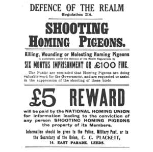 War pigeon - British WW1 poster regarding the killing of war pigeons being an offence under Regulation 21A of the Defence of the Realm Act