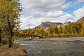 Shoshone National Forest - Wapiti Ranger District - October 2017 01.jpg