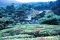 Shugaku-in Imperial Villa, Yokuryū Pond, Kyoto (修学院離宮, 浴龍池, 京都) (1967-05-09 by Roger W).jpg
