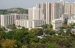 Shui Pin Wai Estate (full view).jpg