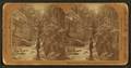 Siren Gorge, below Box Canyon, Ouray, Colo., U.S.A, from Robert N. Dennis collection of stereoscopic views.png