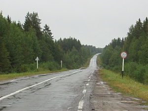 Kholmogorsky District - A road in Siysky Zakaznik, Kholmogorsky District