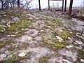 Skälvs hällristningar i Norrköping, den 26 december 2007, bild 5.jpg