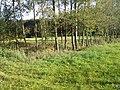 Slatiny - hranice - panoramio (5).jpg
