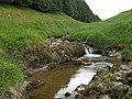 Small waterfall, Howpasley Burn - geograph.org.uk - 467158.jpg
