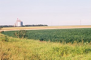 Economy of Paraguay - Soybeans and silos in Paraguay