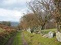 Split stones in field boundary - geograph.org.uk - 342880.jpg