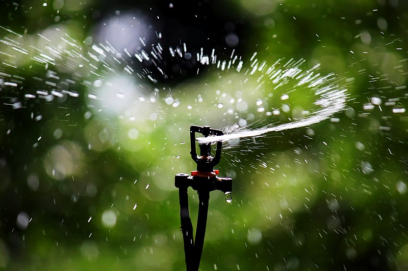 Sprinkler Irrigation - Sprinkler head.JPG