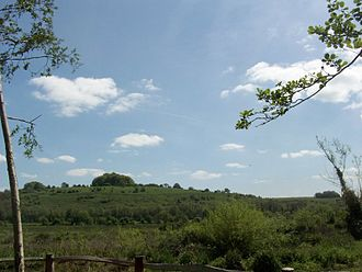 St. Catherine's Hill, Hampshire - View of the hill from the water meadows