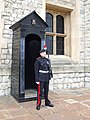 Standing guard, London - geograph.org.uk - 908650.jpg