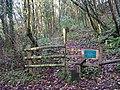 Start of the Footpath through Blaxton Woods - geograph.org.uk - 477346.jpg