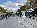Station Tramway Ligne 3a Maryse Bastié Paris 5.jpg