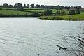 Staunton Harold Reservoir - geograph.org.uk - 238691.jpg