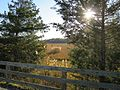 Sun shining through on the Junction ^ Breakwater Trail - panoramio.jpg