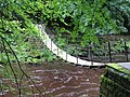 Suspension bridge at Allen Banks - geograph.org.uk - 926490.jpg